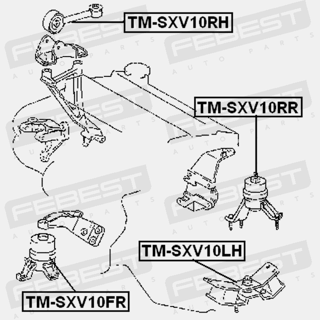 Tm Sxv10rr Febest Rear Engine Mount Hydro Mt For Toyota 12371