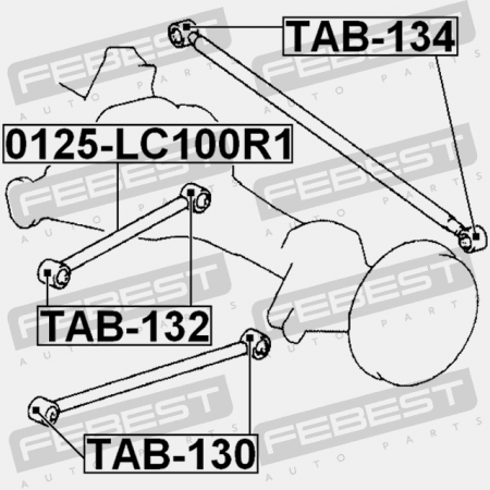 Car Trailing Arm